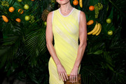 Kate Bosworth Form-Fitting Dress