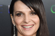 Juliette Binoche Side Parted Straight Cut