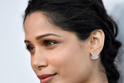 Freida Pinto Long Braided Hairstyle